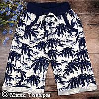 Шорты с пальмами для мальчика Размеры: 8-9,9-10,10-11,11-12 лет (6429-1)