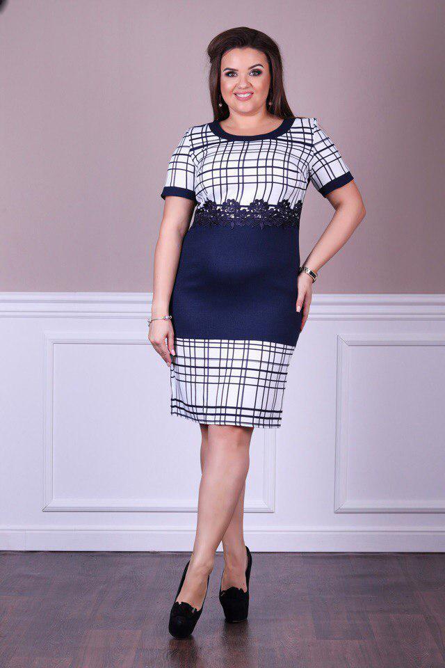 Платье  больших размеров 50+  с принтом    арт 4964-504