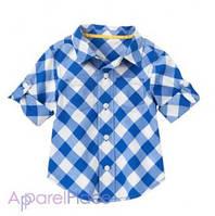 Gymboree Рубашка в синюю клетку