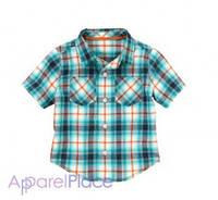 Gymboree Рубашка в голубую клетку
