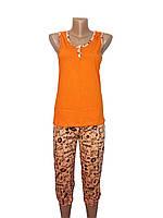 Комплект пижама Париж оранжевый р 44 топ однотон (кулир)