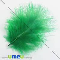 Перья Индейки, Зеленые, 4-9 см, 1 уп (10 шт). (PER-002774)