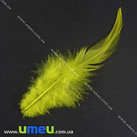 Перья Петуха, Желтые, 7-12 см, 1 уп (12 шт). (PER-002612)