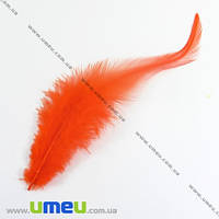 Перья Петуха, Оранжевые, 7-12 см, 1 уп (12 шт). (PER-002614)