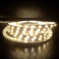 LED Світлодіодна стрічка SMD2835-60 12V IP20 Преміум Т-Біла