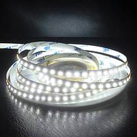 LED стрічка SMD2835-120 12V IP20 Преміум Біла