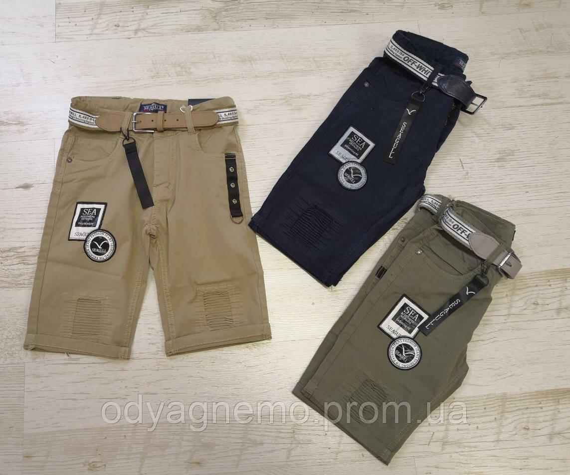 CSQ56891, Seagull, Котоновые шорты для мальчиков