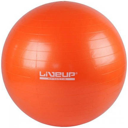 Фитбол GYM BALL 55см «LS-3221-55o», фото 2