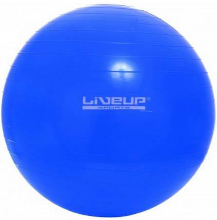 Фитбол GYM BALL 65см «LS-3221-65b», фото 2