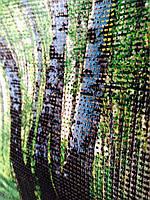 Противомоскитная сетка с фото картинкой от комаров и насекомых для беседок, веранд, террас, балконов.