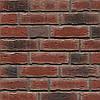 Клинкерная плитка Feldhaus R663