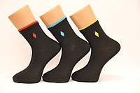 Мужские носки средние с хлопка 200 СЛ НЛ 25-27  цветная полоска