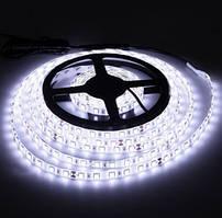 Светодиодная лента LED 24V, SMD5050, IP20, 60 д/м, белый холодный