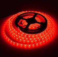 Светодиодная лента LED 24V, SMD5050, IP20, 60 д/м, красный, фото 1