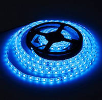 Светодиодная лента LED 24V, SMD5050, IP20, 60 д/м, синий, фото 1