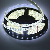 Светодиодная лента LED влагозащищённая, 24V, SMD5050, IP65, 60 д/м, белый холодный, фото 1