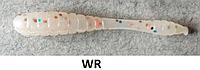 Силиконовые приманки HI MERA - WORM 5 (col.WR)