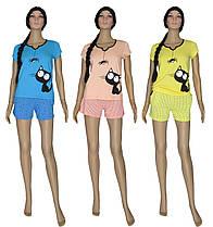 Пижама подростковая для девочки 03231 Pauchok, футболка и шорты, хлопок, р.р.40-58