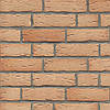 Клинкерная плитка Feldhaus R696