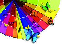 Как выбрать цвет краски для стен: 10 главных нюансов