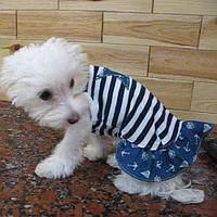 "Платье ""Морская звезда"" Vip Doggy размер S"