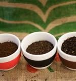 Черный плантационный