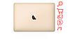 "MacBook 12"" Gold (MNYK2) 2017"