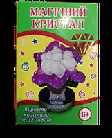 Кристалл Фиолетовый цветок
