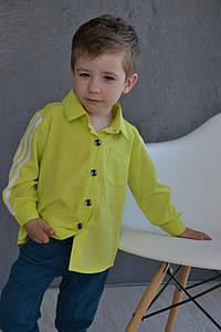 Рубашка для мальчика с лампасами на рукавах в расцветках. МО-18-0418