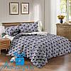 Еврокомплект постельного белья из сатина ГРАФИКА (200*220)