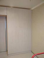 Шкаф купе на заказ с проходом в другую комнату, фото 1