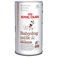 Royal Canin Babydog milk - заменитель сучьего молока для щенков