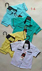 Детская рубашка для мальчика (9 - 12 лет) купить оптом в Украине 7км