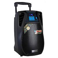 Комбоусилитель колонка Temeisheng SL10-02 c аккумулятором переносная ( Реплика )