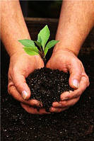 Екологічний аналіз грунту та супутніх матеріалів