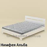 Кровать Стиль-160 двуспальная эконом-класса, фото 4