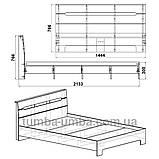 Кровать Стиль-160 двуспальная эконом-класса, фото 3