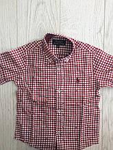 Рубашка с коротким рукавом для мальчика 1-5 лет