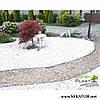 Пластиковий бордюр Garden Rand (Польща), фото 5