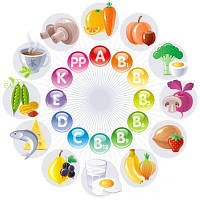 Витамины - Краткая характеристика.