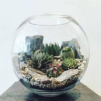 Ваза шар аквариум CVCRISTAL  11,5 л