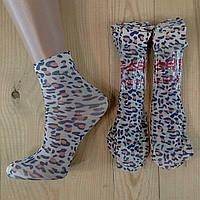 Капроновые носки с рисунком женские НК-2769, фото 1