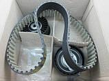 Комплект ремень + 2 ролика ГРМ на Рено Трафик 03-> 2.5dCi — Renault (Оригинал) - 7701477380, фото 10