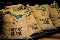 Бразильский кофе – напиток, достойный памятника