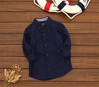 Рубашка Горох удлиненная (син) 104,110,116, фото 1
