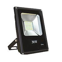 Прожектор светлодиодный ENERLIGHT DUET 30Вт 6500K
