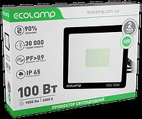 Прожектор світлодіодний 100W алюмінієвий корпус Ecolamp