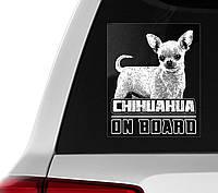 Наклейка на авто / машину Чихуахуа на борту