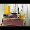 Инкубатор  DZE (MS) 36/144 с автоматическим переворотом яиц