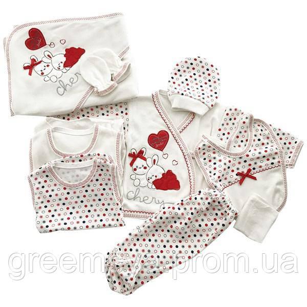 Комплект на выписку для новорожденного, набор подарочный детской одежды на  подарок. Для девочки. 11 предметов b1e0e4814bf